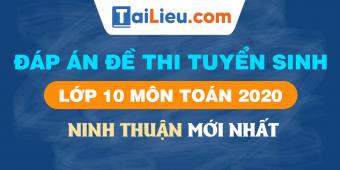 background-dap-an-de-thi-mon-toan-vao-lop-10-ninh-thuan-2020.png