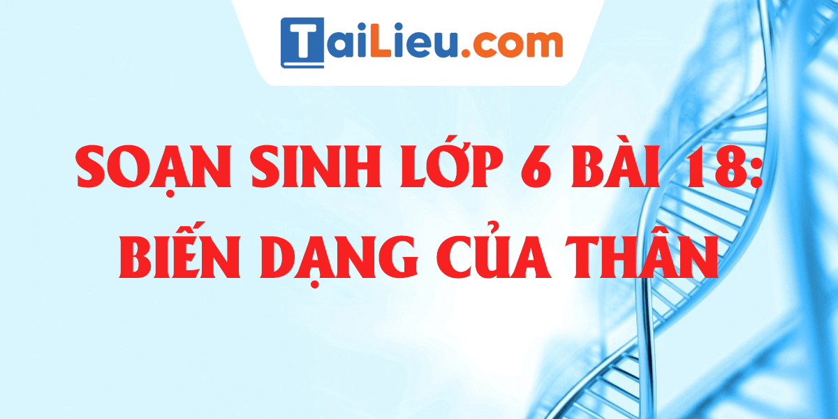 soan-sinh-hoc-6-bai-18-bien-dang-cua-than.png