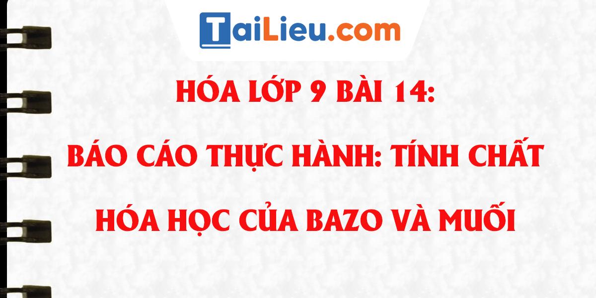 bao-cao-thuc-hanh-tinh-chat-hoa-hoc-cua-bazo-va-muoi-hoa-9.png