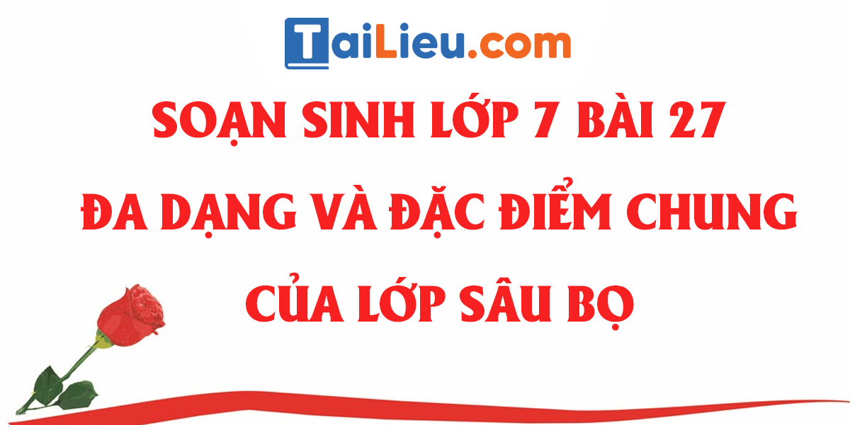 soan-sinh-7-bai-27-da-dang-va-dac-diem-chung-cua-lop-sau-bo.png