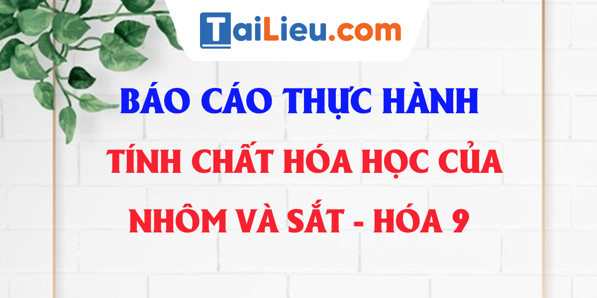 giai-hoa-9-bai-23-thuc-hanh-tinh-chat-hoa-hoc-cua-nhom-va-sat.png