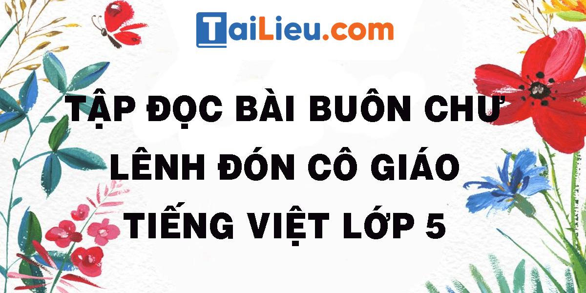 tap-doc-bai-buon-chu-lenh-don-co-giao-tieng-viet-lop-5.png