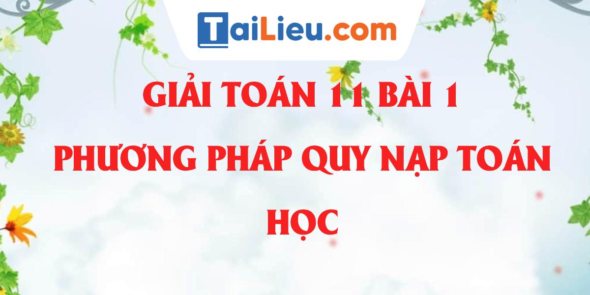 giai-toan-11-bai-1-phuong-phap-quy-nap-toan-hoc-day-du-nhat.png
