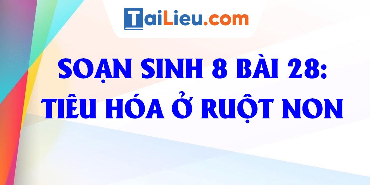 soan-bai-28-tieu-hoa-o-ruot-non-sinh-8-day-du-nhat.png