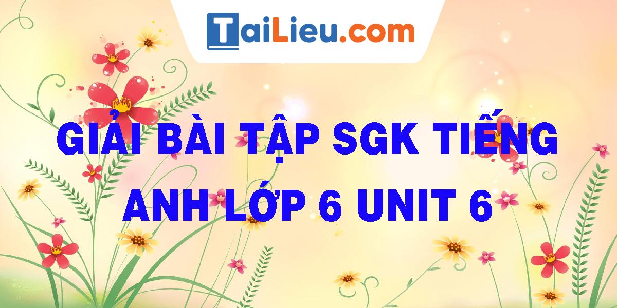 giai-bai-tap-sgk-tieng-anh-lop-6-unit-6.png