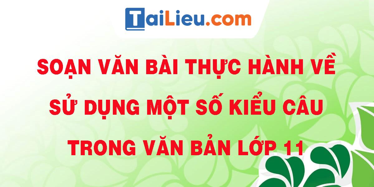 soan-van-bai-thuc-hanh-ve-su-dung-mot-so-kieu-cau-trong-van-ban-lop-11.png