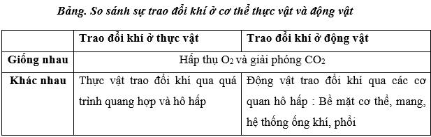 Lý thuyết Sinh học 11 Bài 22: Ôn tập chương 1