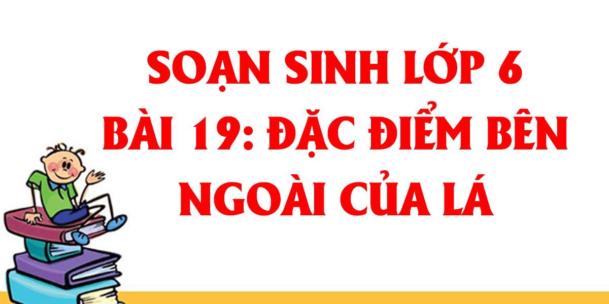 soan-sinh-hoc-lop-6-bai-19-dac-diem-ben-ngoai-cua-la.png