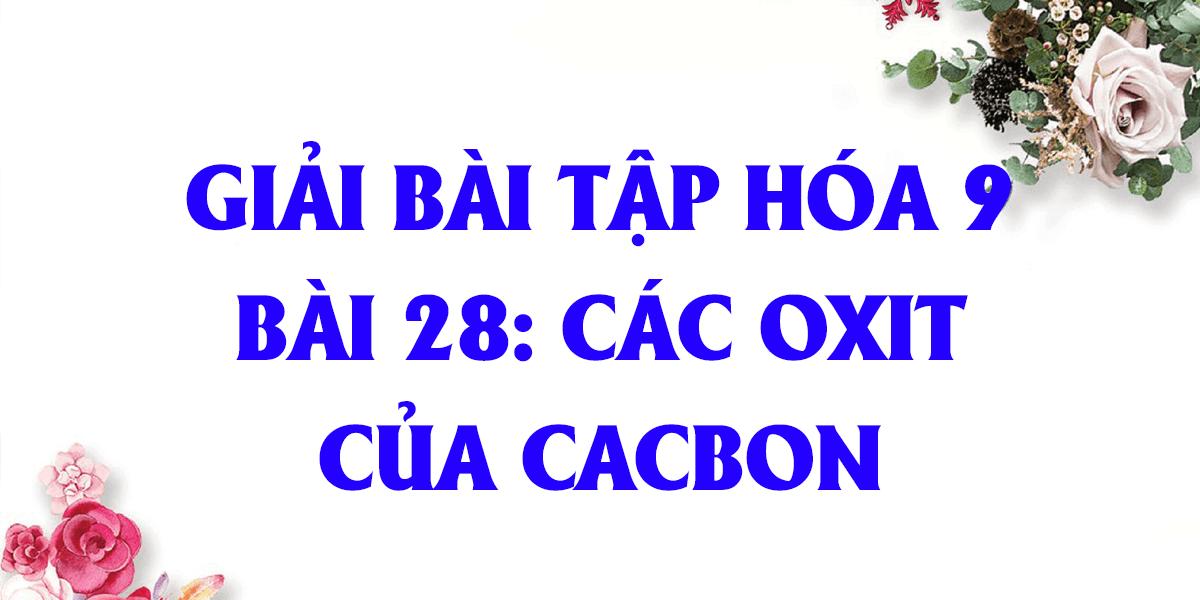 giai-bai-tap-hoa-9-bai-28-cac-oxit-cua-cacbon-day-du-nhat.png