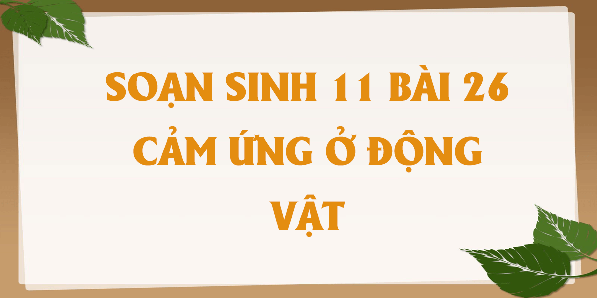 soan-sinh-11-bai-26-cam-ung-o-dong-vat-chi-tiet.png