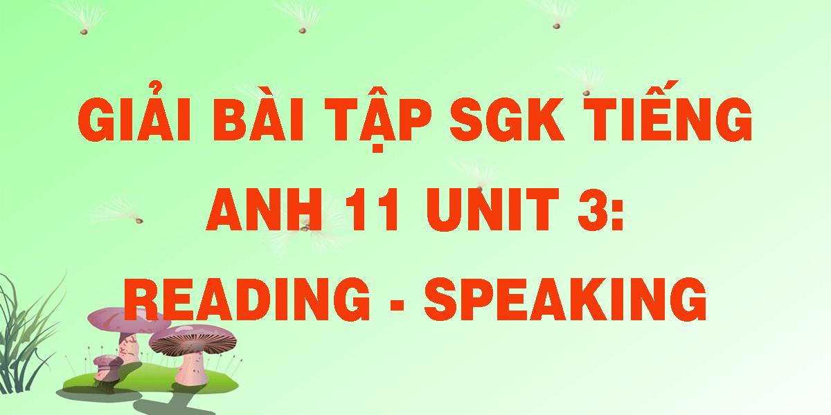 giai-bai-tap-sgk-tieng-anh-unit-3-lop-11-reading-speaking.png
