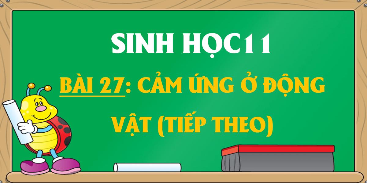 soan-sinh-11-bai-27-cam-ung-o-dong-vat-tiep-theo-ngan-nhat.png