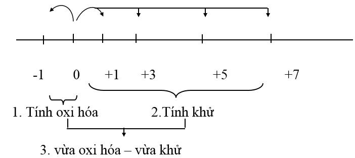 Lý thuyết bài khái quát về nhóm halogen
