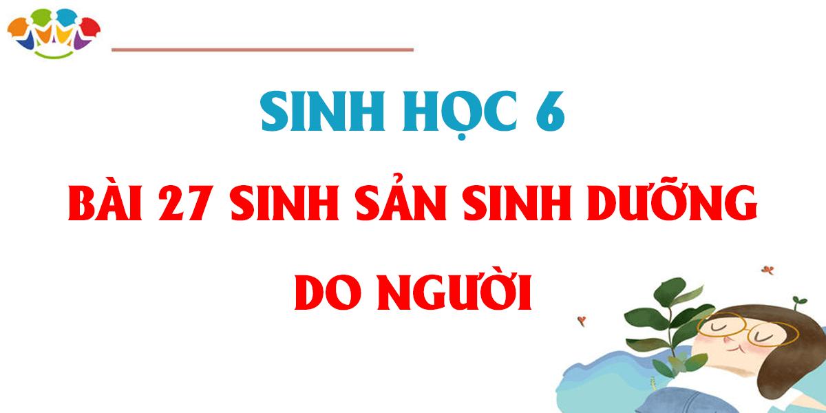 soan-sinh-hoc-6-bai-27-sinh-san-sinh-duong-do-nguoi-day-du.png