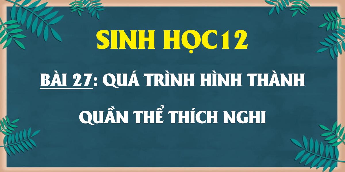 soan-sinh-12-bai-27-qua-trinh-hinh-thanh-quan-the-thich-nghi.png