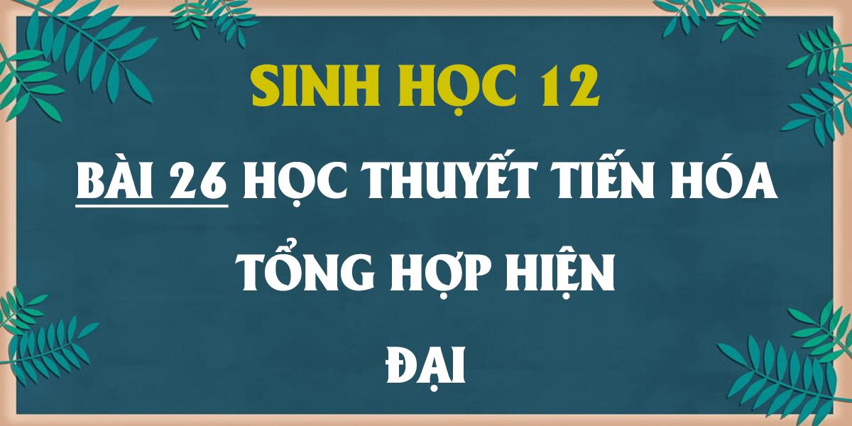 giai-sinh-12-bai-26-hoc-thuyet-tien-hoa-tong-hop-hien-dai.png