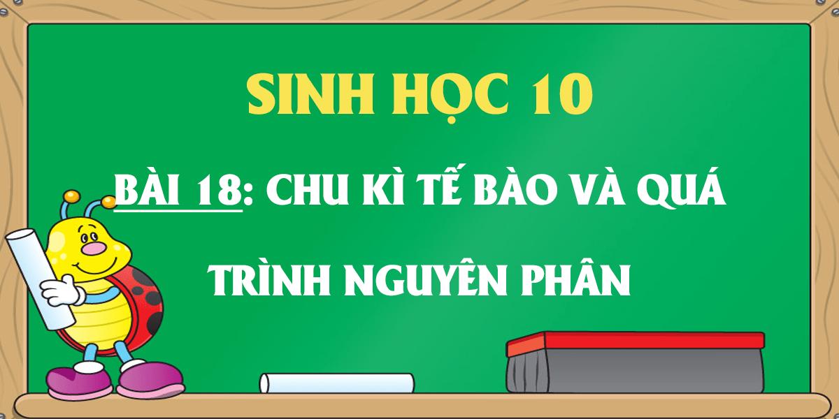 soan-sinh-hoc-10-bai-18-chu-ki-te-bao-va-qua-trinh-nguyen-phan.png