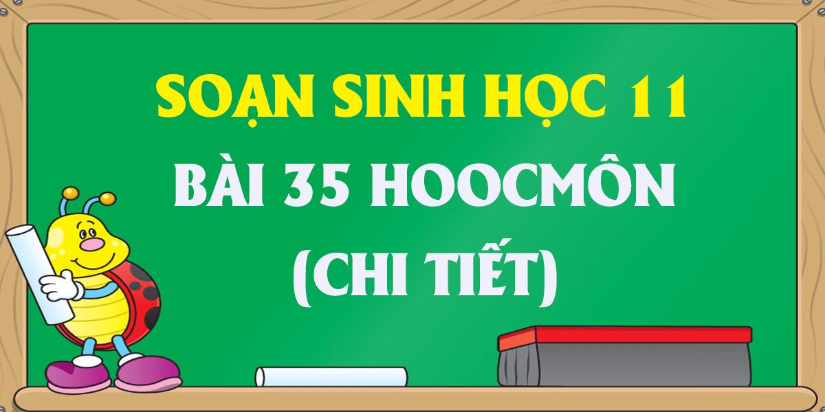 soan-sinh-hoc-11-bai-35-hoocmon-thuc-vat-day-du-nhat.png