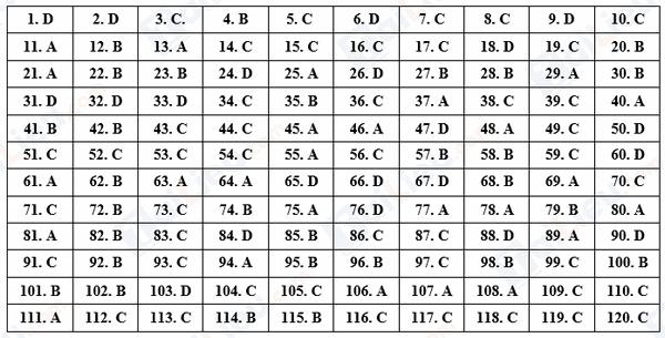 đáp án đề thi mẫu đánh giá năng lực 2019 dhqg tphcm