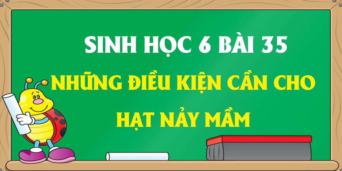 soan-sinh-hoc-6-bai-35-nhung-dieu-kien-can-cho-hat-nay-mam.png