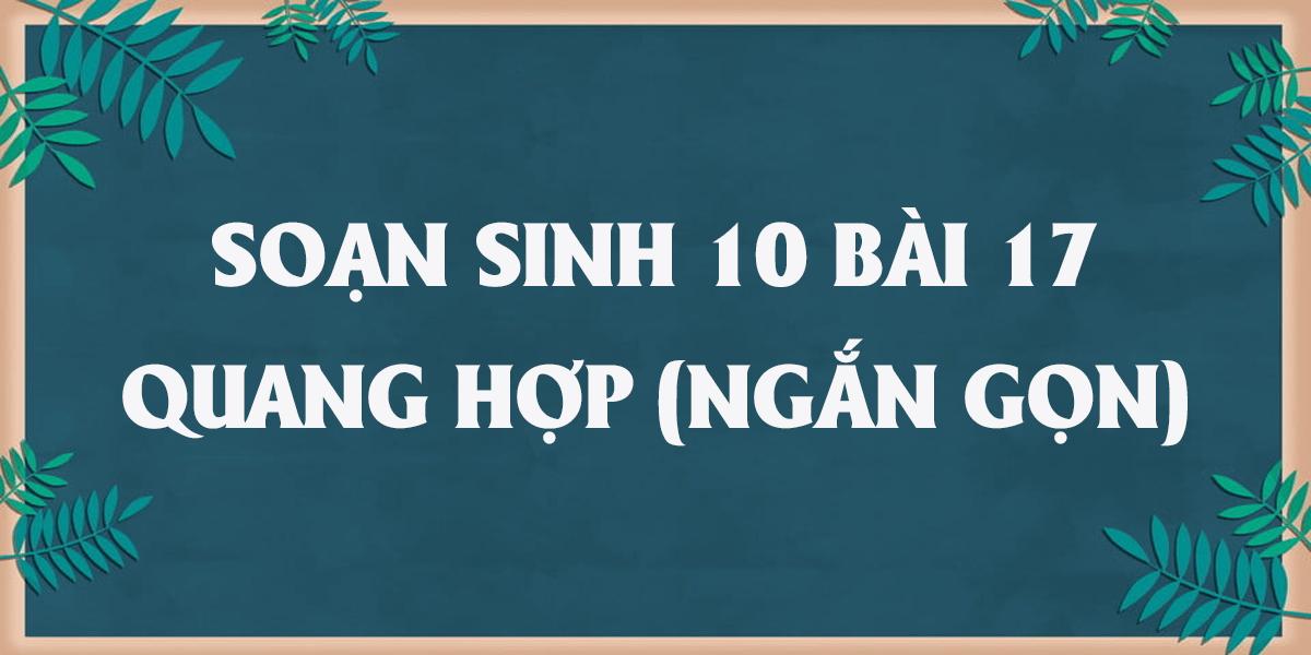 giai-sinh-10-bai-17-quang-hop-ngan-gon-nhat.png