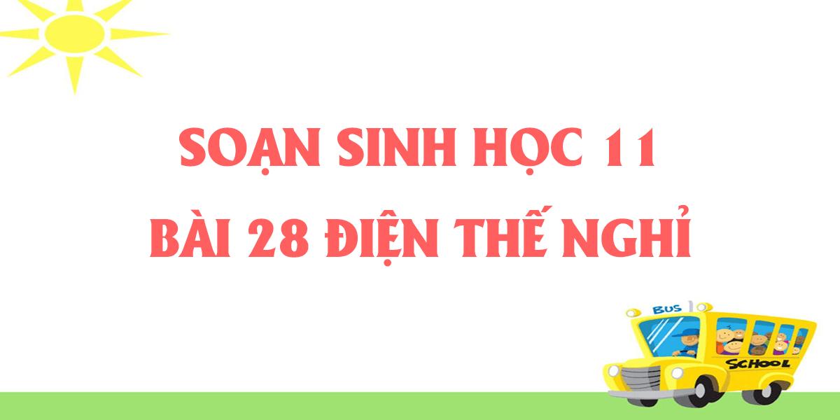 soan-sinh-11-bai-11-dien-the-nghi-ngan-gon-nhat.png