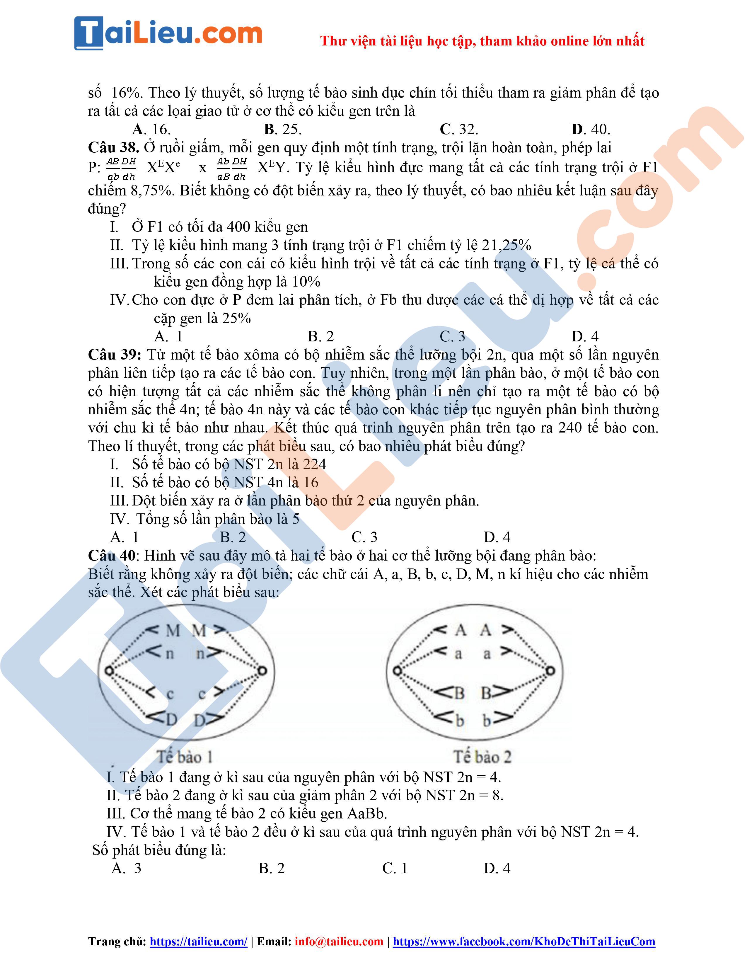 Đáp án Đề thi thử THPT Quốc gia 2020 môn Sinh Trường Hồng Lĩnh (Lần 1)