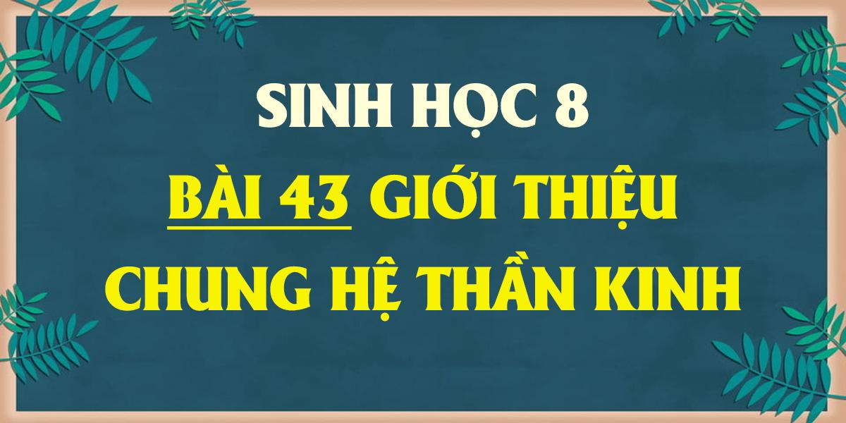 soan-sinh-8-bai-43-gioi-thieu-chung-he-than-kinh-ngan-nhat.png