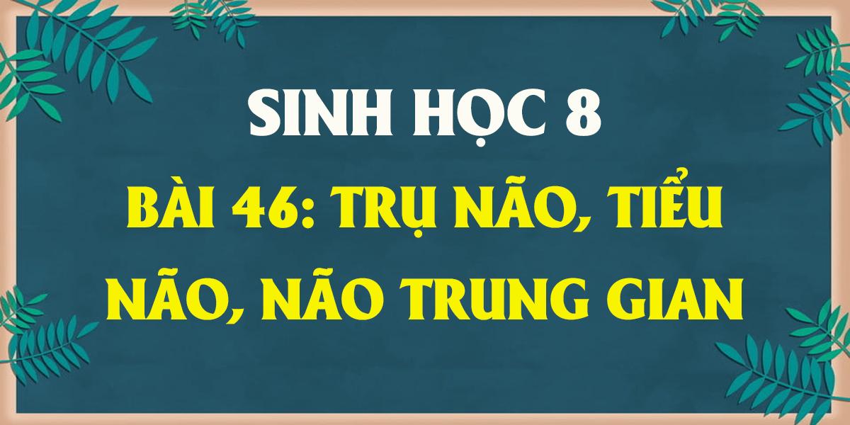 soan-sinh-8-bai-46-tru-nao-tieu-nao-nao-trung-gian-ngan-gon.png