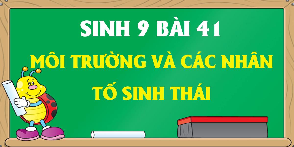 giai-sinh-9-bai-41-moi-truong-va-cac-nhan-to-sinh-thai-ngan-gon.png