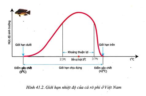 Lý thuyết Sinh học 9 Bài 41: Môi trường và các nhân tố sinh thái hay, chi tiết