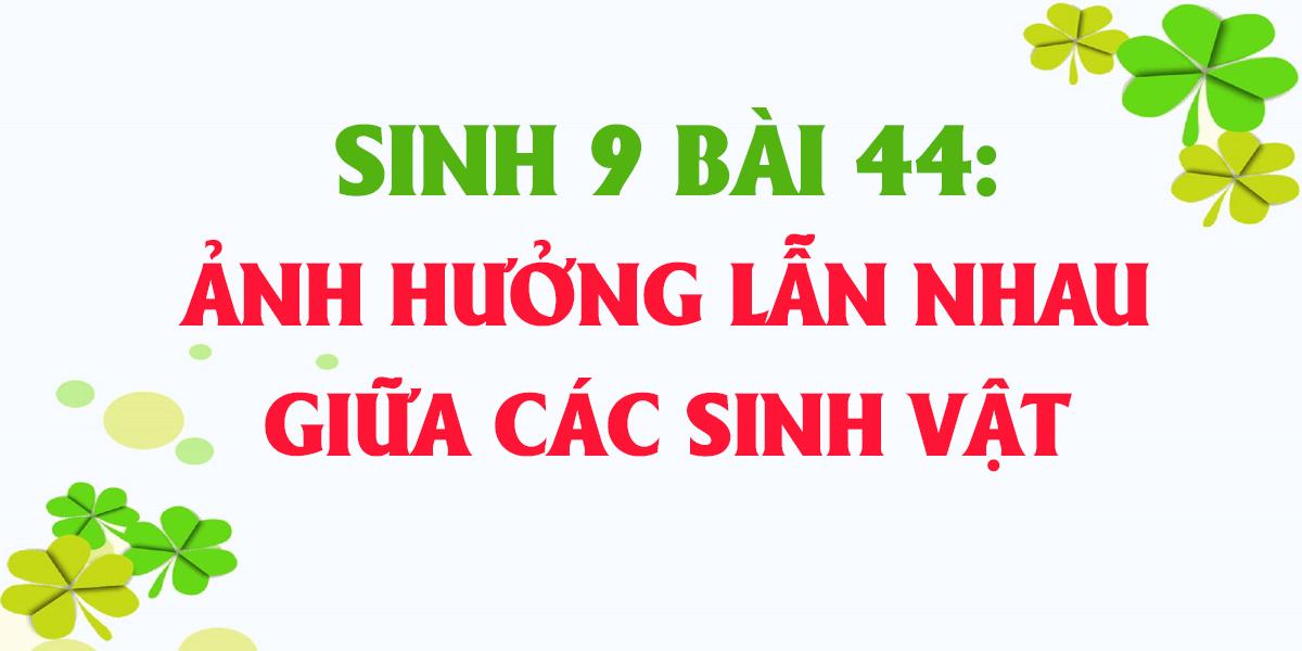 soan-sinh-9-bai-44-anh-huong-lan-nhau-giua-cac-sinh-vat-ngan-gon.png