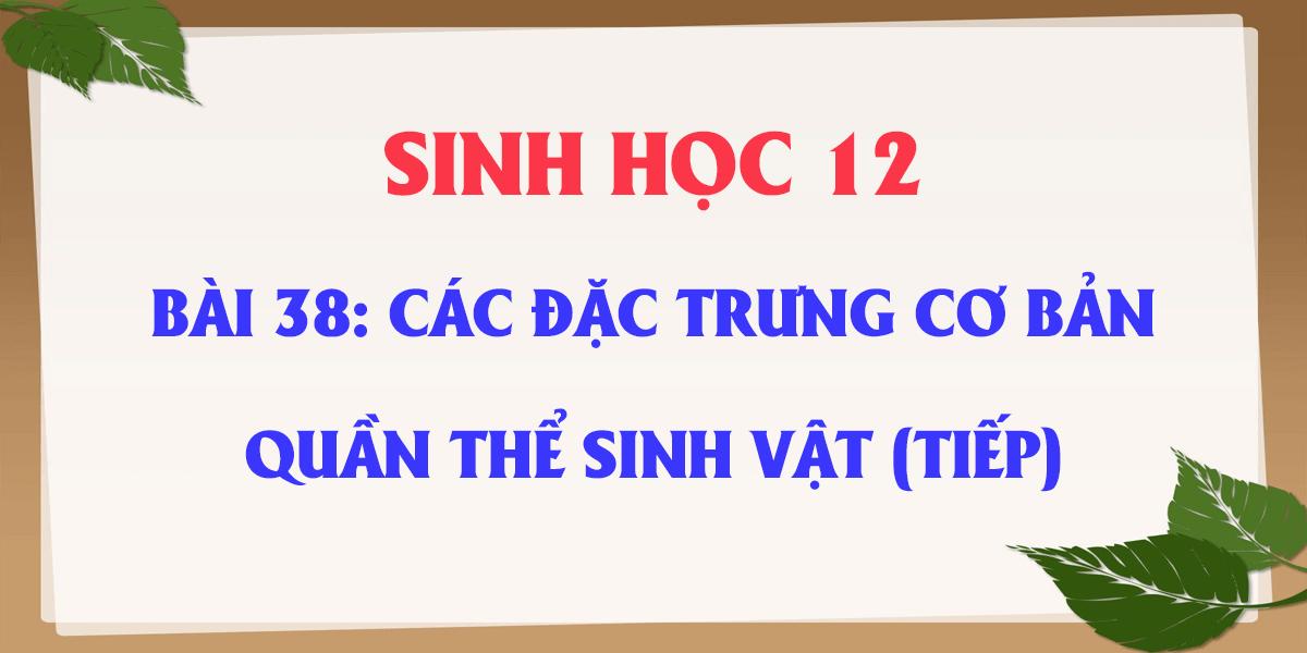 soan-bai-38-sinh-hoc-12-cac-dac-trung-co-ban-quan-the-sinh-vat-tiep.png