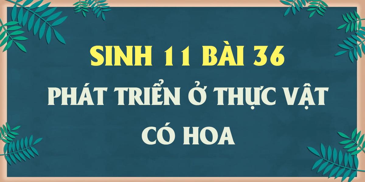giai-sinh-hoc-11-bai-36-phat-trien-o-thuc-vat-co-hoa-ngan-gon.png