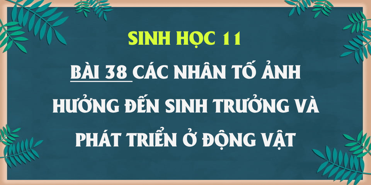 soan-sinh-11-bai-38-cac-nhan-to-anh-huong-den-sinh-truong-va-phat-trien-o-dong-vat.png
