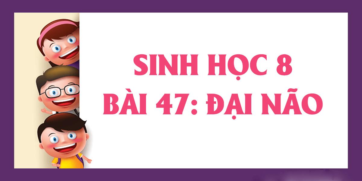 soan-sinh-8-bai-47-dai-nao-ngan-gon-nhat.png