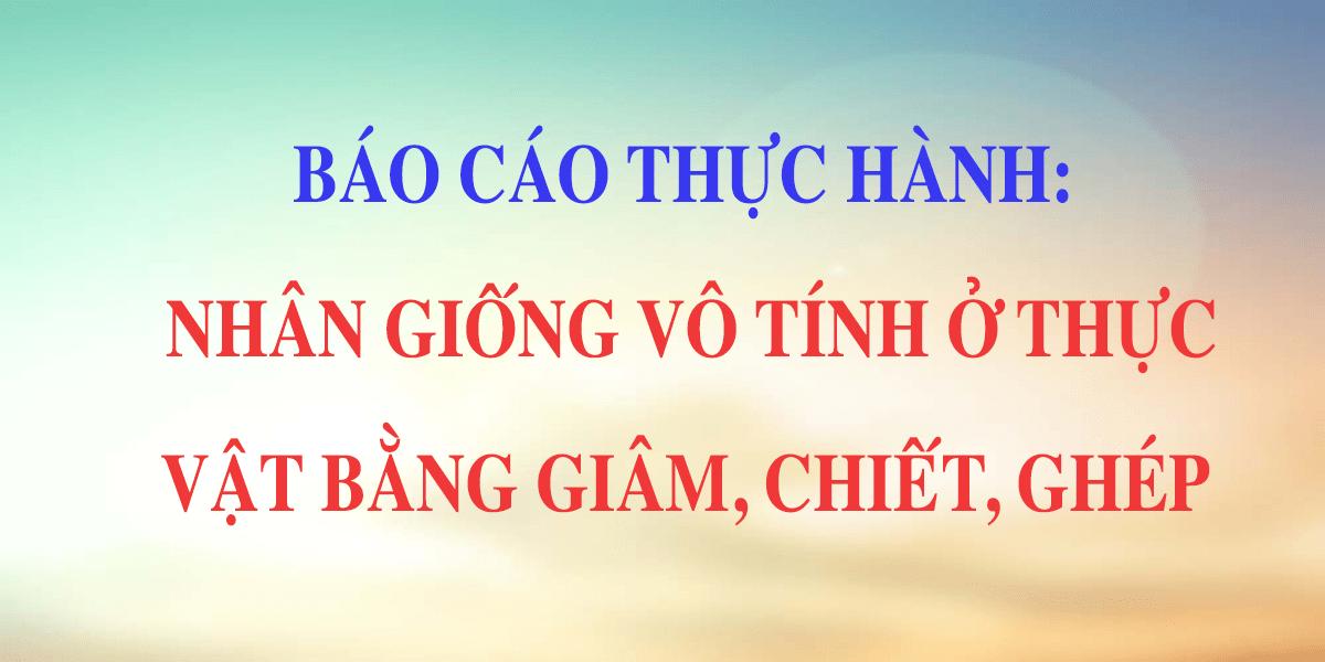sinh-11-bai-43-thuc-hanh-nhan-giong-vo-tinh-o-thuc-vat-bang.png