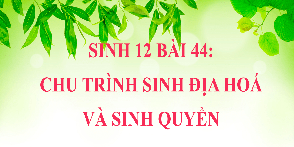 soan-sinh-12-bai-44-chu-trinh-sinh-dia-hoa-va-sin.png