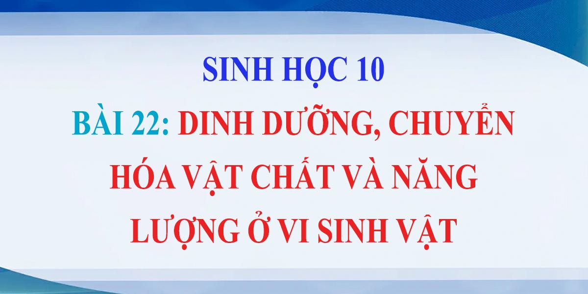 giai-sinh-10-bai-22-dinh-duong-chuyen-hoa-vat-chat-va-nang-luong-o-vi-sinh-vat.png