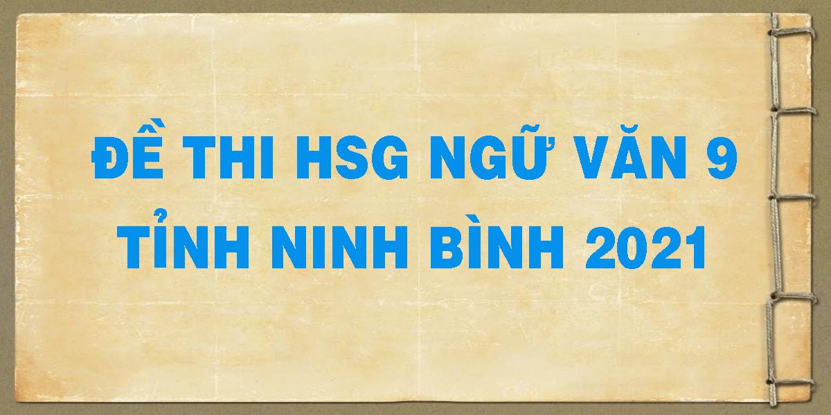 de-thi-hsg-ngu-van-tinh-ninh-binh-2021.png