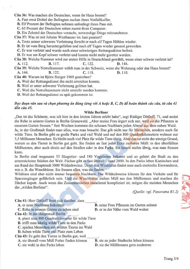 Đề thi tham khảo THPT quốc gia Tiếng Đức 2021-3