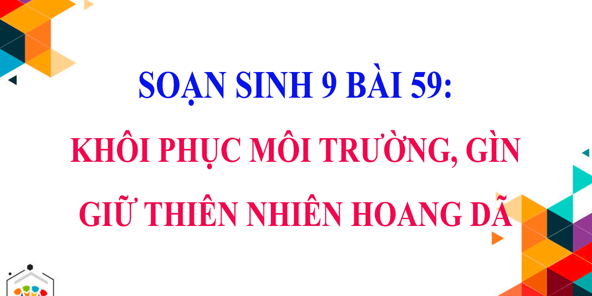 soan-sinh-9-bai-59-khoi-phuc-moi-truong-va-gin-giu-thien-nhien-hoang-da.png