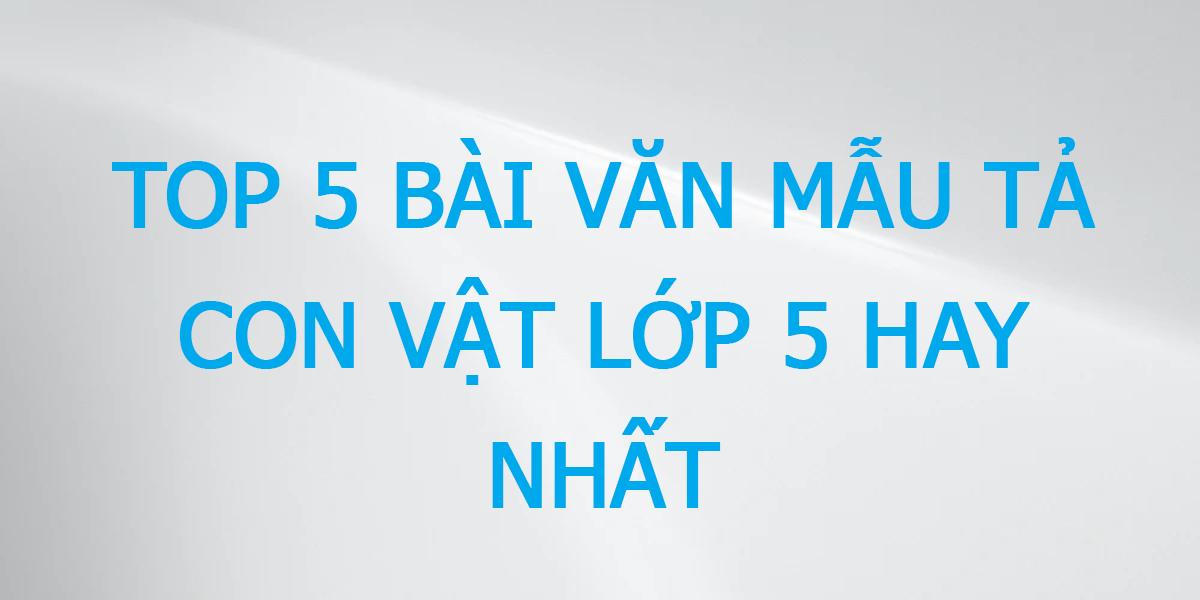 bai-van-ta-con-vat-lop-5.png