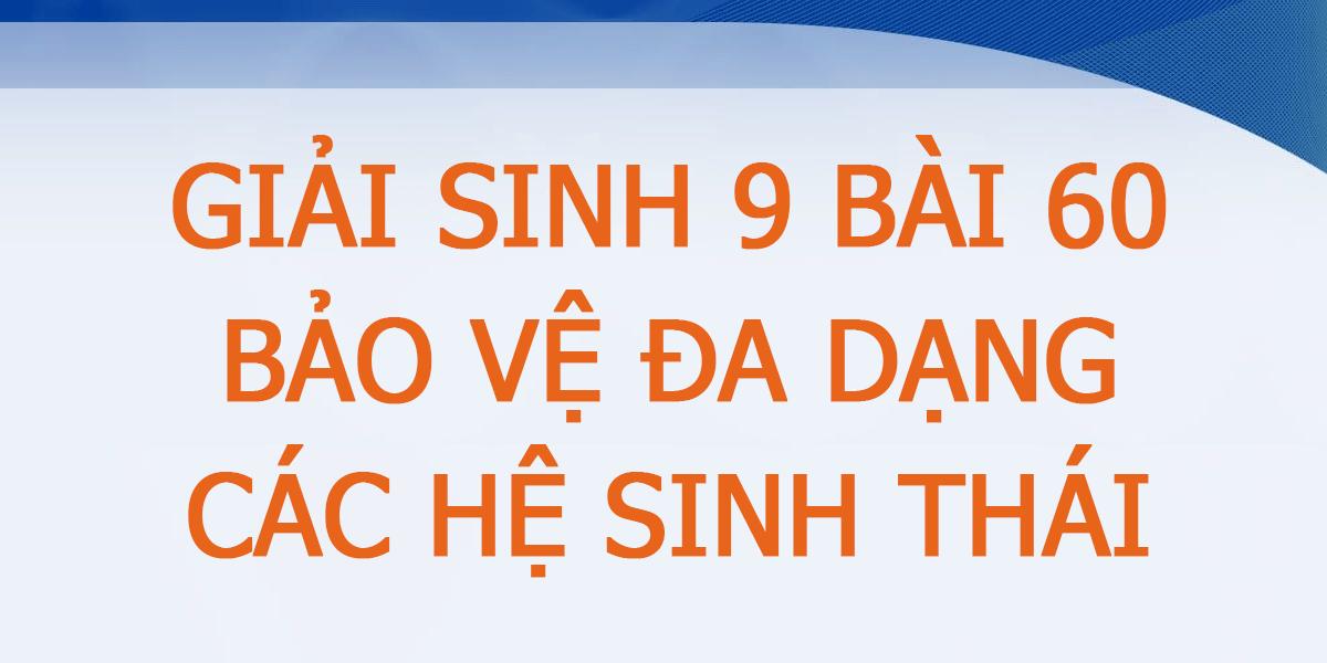giai-sinh-9-bai-60-ngan-nhat.png