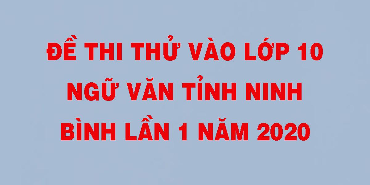 de-thi-thu-vao-lop-10-ngu-van-tinh-ninh-binh-lan-1-nam-2020.png