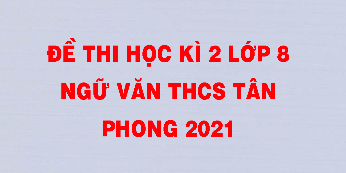 de-thi-hoc-ki-2-lop-8-ngu-van-thcs-tan-phong-2021.png
