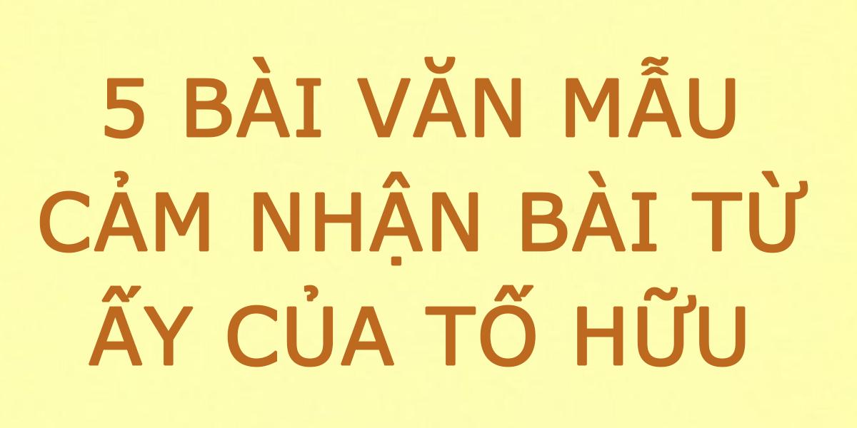 cam-nhan-bai-tho-tu-ay-to-huu.png