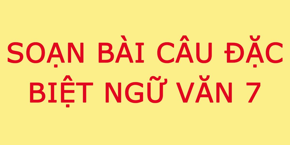 soan-bai-cau-dac-biet-lop-7.png