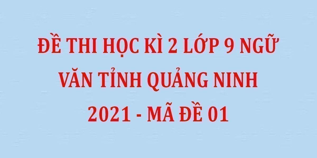 de-thi-hoc-ki-2-lop-9-ngu-van-tinh-quang-ninh-2021-ma-de-01.jpg