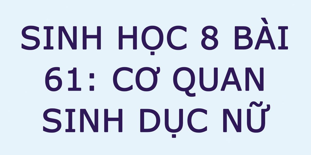 giai-sinh-8-bai-61.png